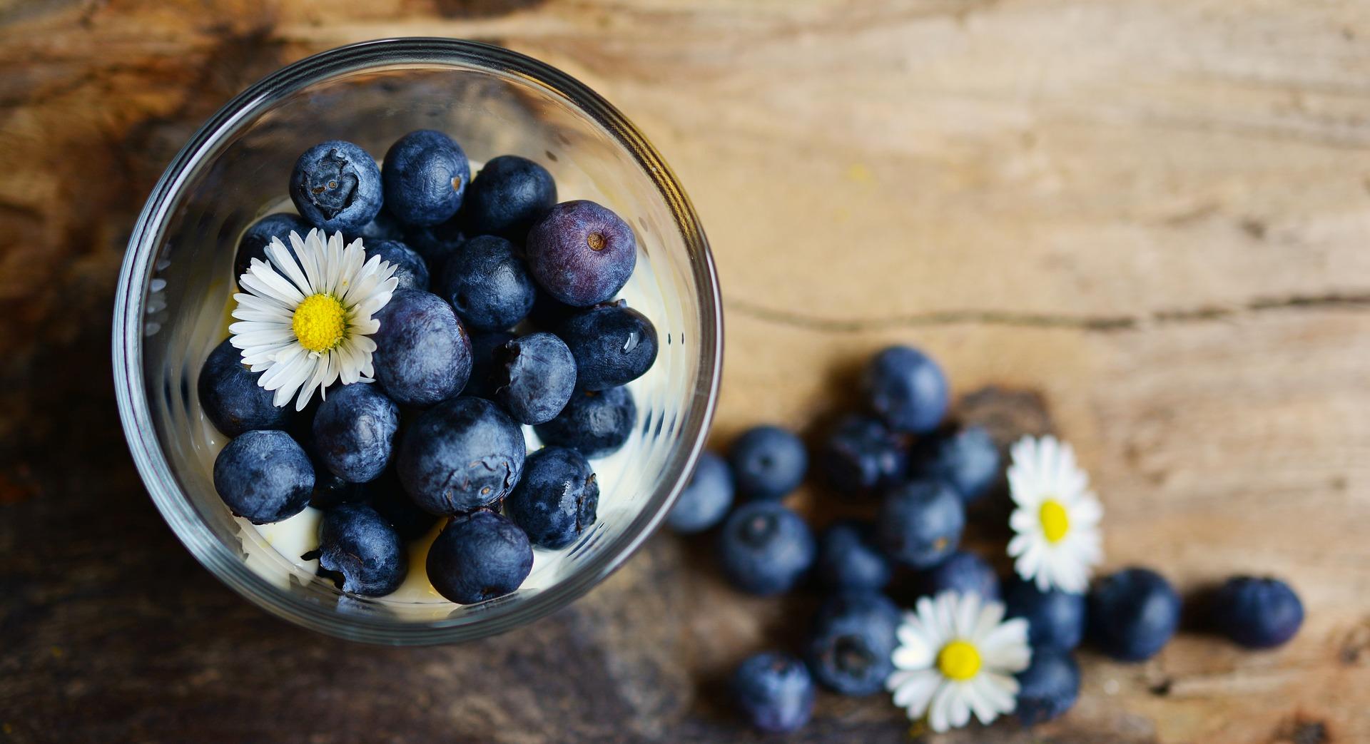 arandano alimentación anticancerígena