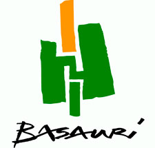 Ayuntamiento de Basauri