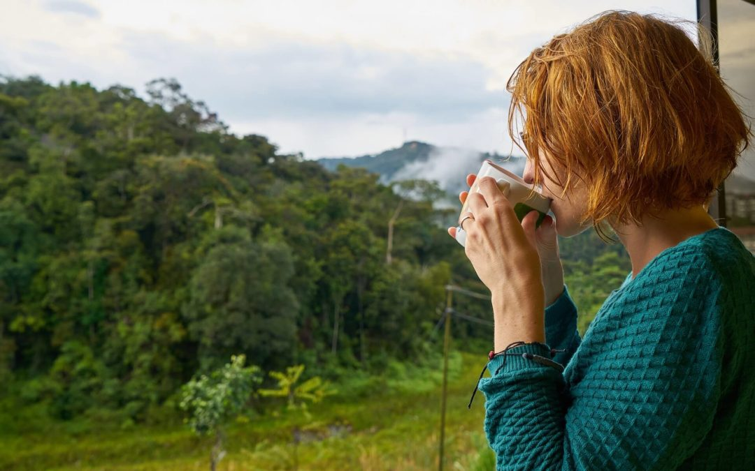 beneficios del café y el té