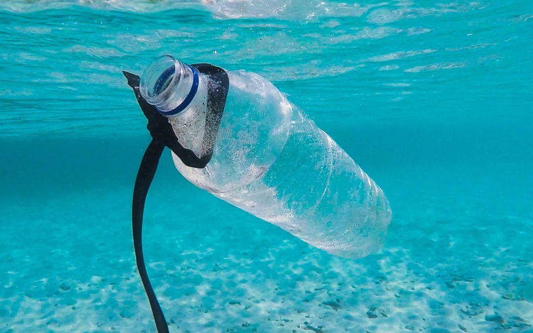 como saber si se puede reutilizar reusar reciclar botella de plástico bpa